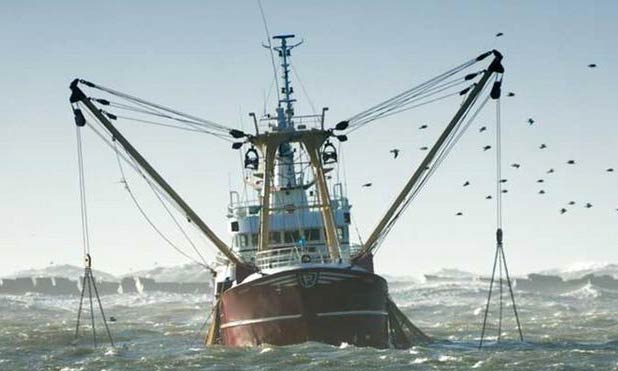 eu-fishing-policy-marketexpress-in