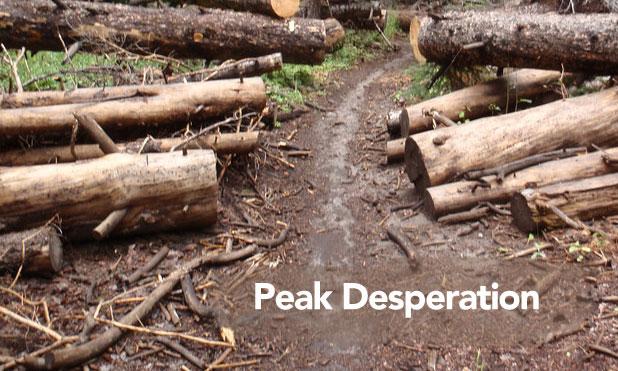 Peak-Desperation-markets-marketexpress-in
