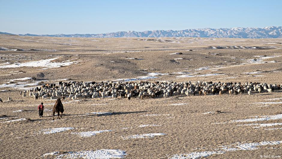 mongolia-nomads-climate-change-marketexpress-in
